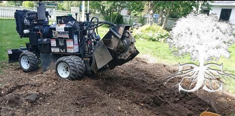 Stump grinding highland