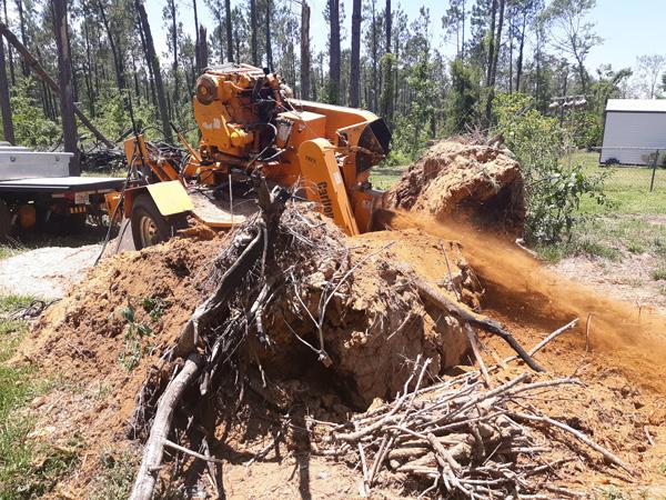 stump grinding west bloomfield