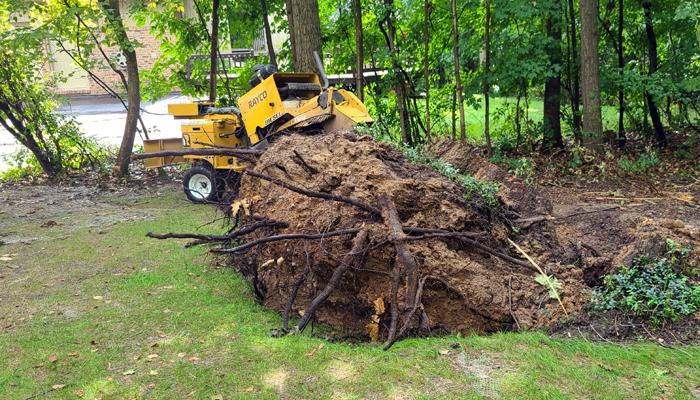 stump grinding bloomfield township